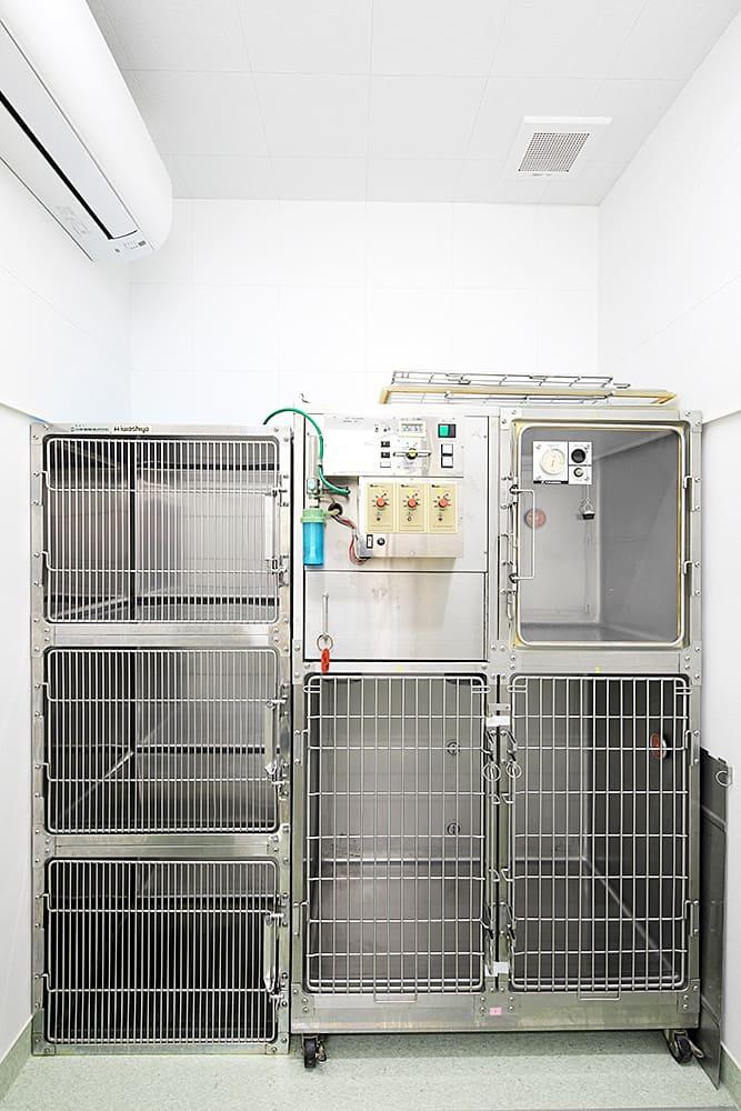 隔離入院室・エキゾチックペット入院室